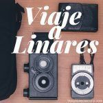 Viaje a Linares: International Congress Of Language And Literature